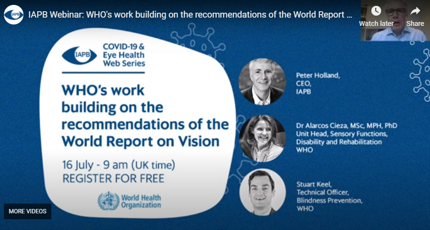 WHO and the World Report on Vision