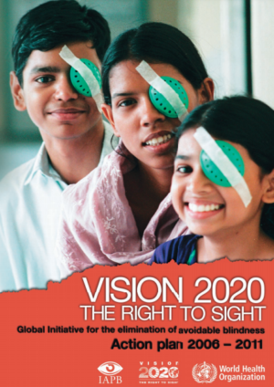 VISION 2020 Action Plan 2006-2011