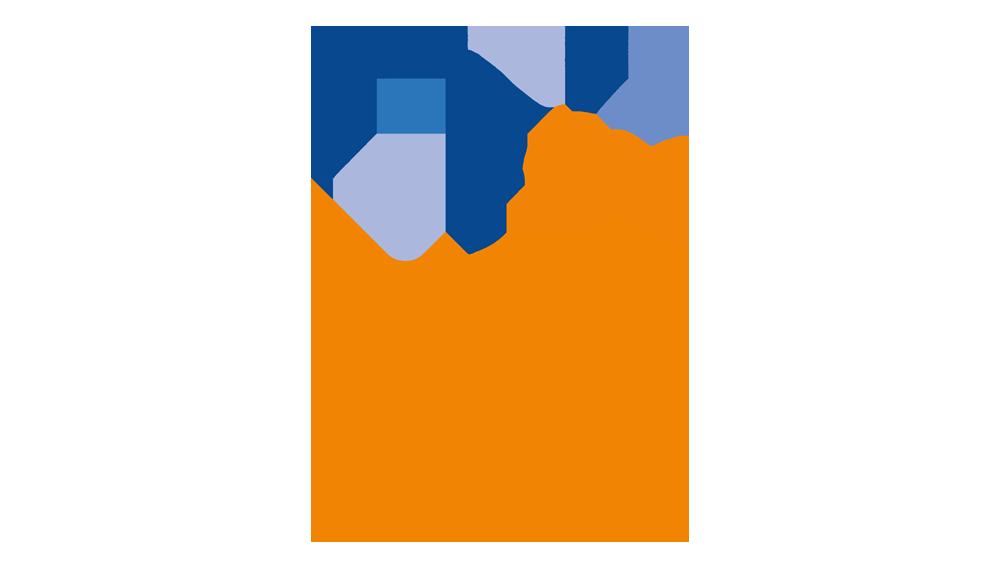 WSD2020 Spanish logo