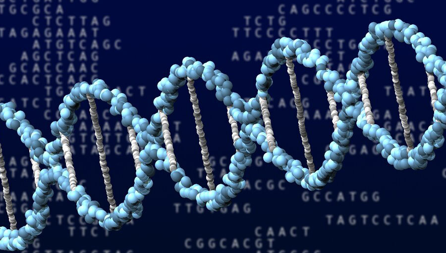 Conceptual illustration of DNA in PNG format. This is just meant to be decorative and not scientifically accurate.
