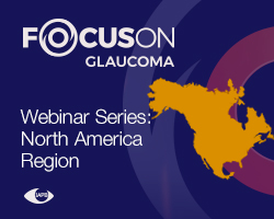 Focus-On-Webinar-NorthAmerica