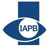 IAPB_StripElement_SingleColour_100HorizontalPixels