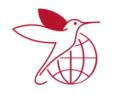 International Diabetes Federation (IDF)