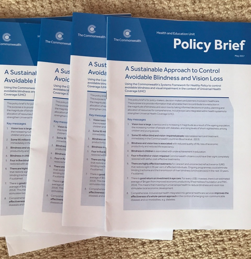Printed copy of the policy brief