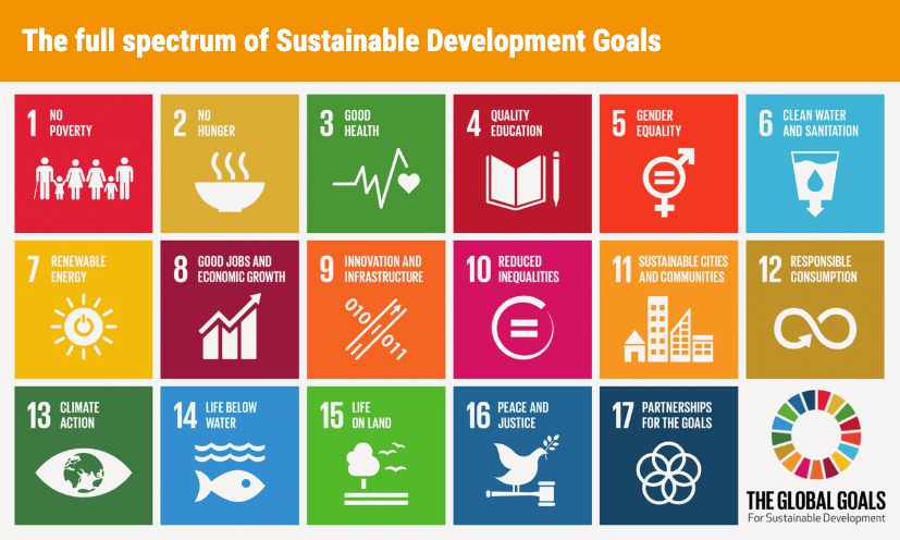 SDG Graphic - IAPB Vision Atlas