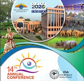 VISION 2020: The Right to Sight – INDIA's 14th annual conference event logo