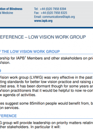 Low Vision Work Group Terms of Reference
