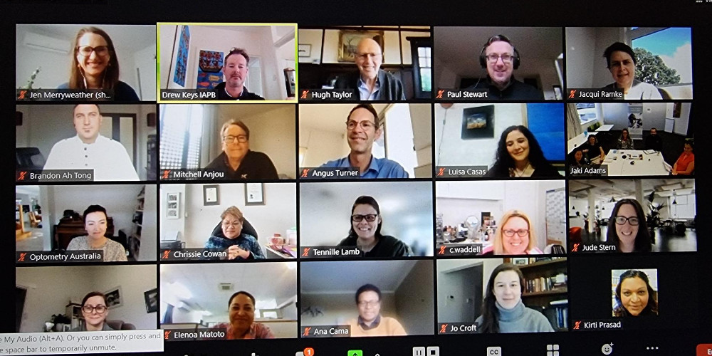 Launch of the IAPB First Nations Special Interest Group Zoom meeting